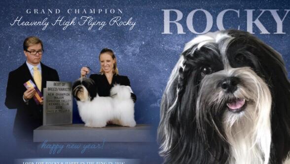 Rocky!!! 2018!